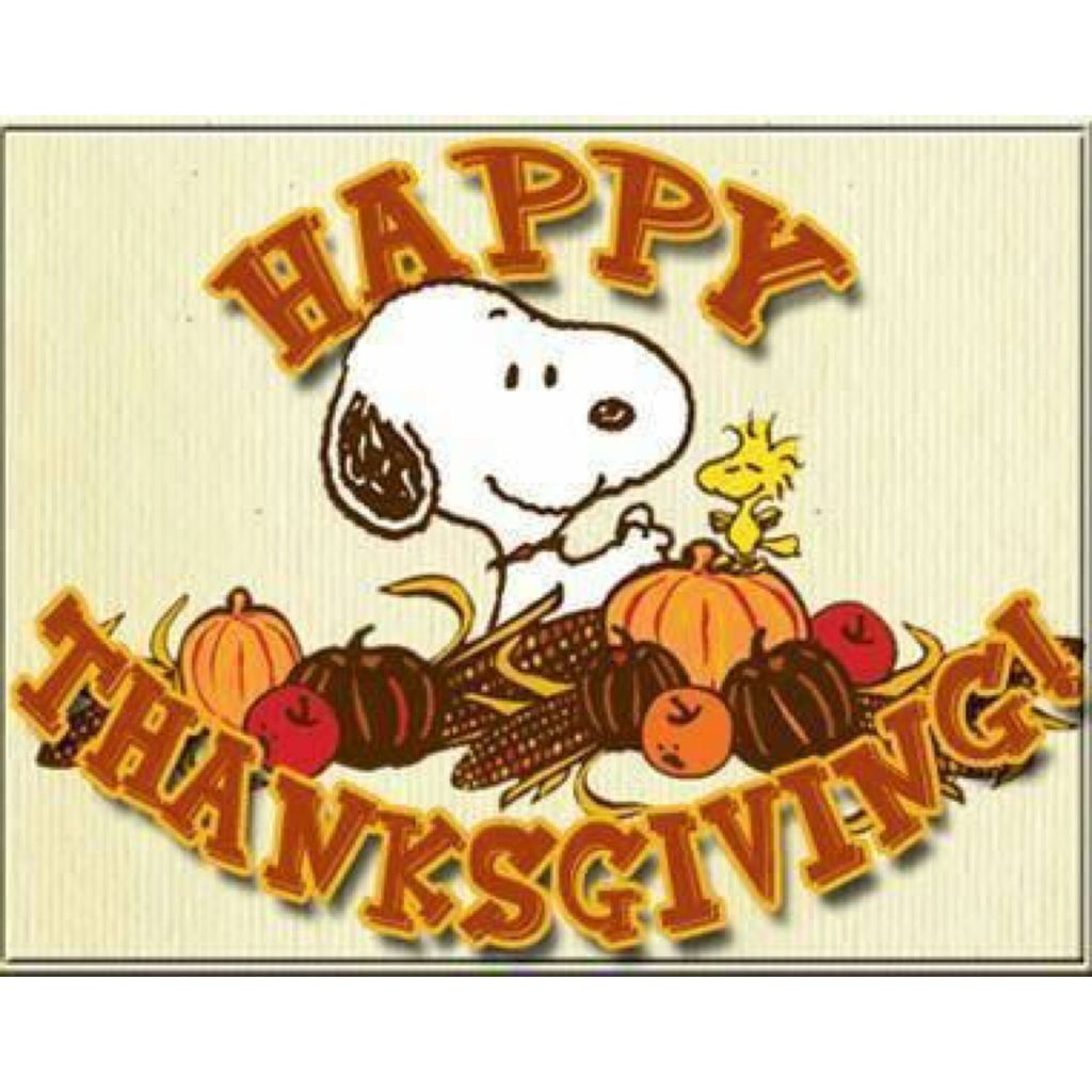 Have great Thanksgiving!